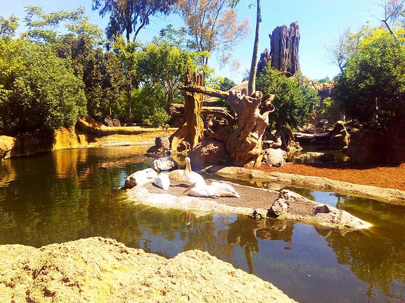 Bio Park Valencia Spain